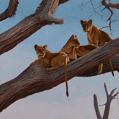 African Portfolio by Robert Louis Caldwell, Painting and drawings inspired from Africa's beautiful habitat and animals.